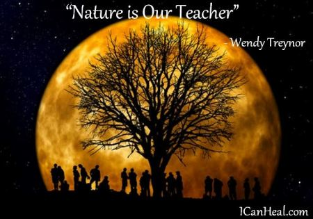 2017.04.03.nature is our teacher by wendy treynor